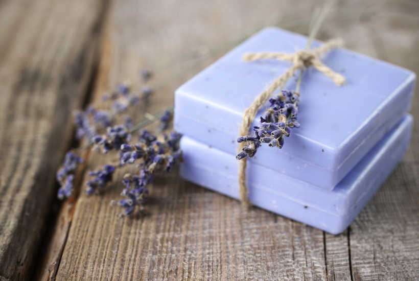 Diy Homemade Lavender Soap Practical Frugality